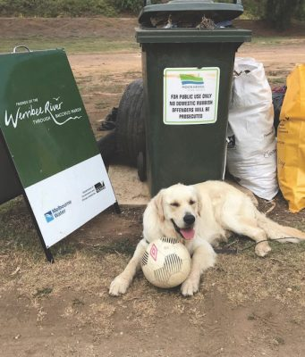 Darwin, the groups mascot guards all the rubbish collected. Photo – Marika Ley