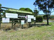 Picture: Rochelle Kirkham (The Ballarat Courier)